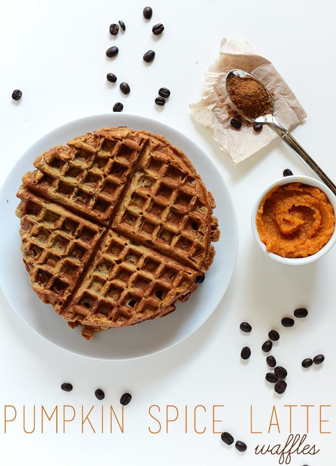 Vegan Pumpkin Recipes for Fall and the Holidays